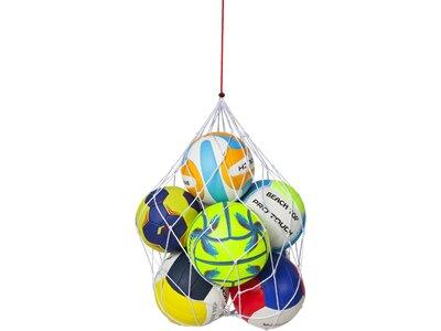 PRO TOUCH Balltragenetz 6-Ball Weiß