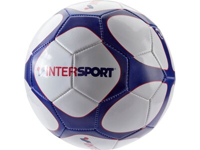 PRO TOUCH Ball INTERSPORT Weiß