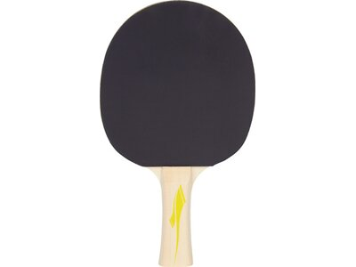 PRO TOUCH Tischtennis-Schläger PRO 2000 Schwarz