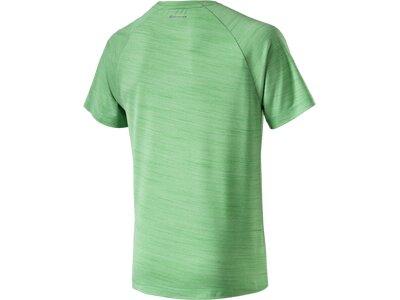 ENERGETICS Herren Shirt Tiger Grün