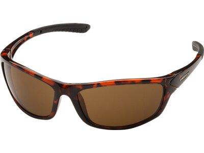 FIREFLY Herren Brille Sonnenbrille Stan Braun