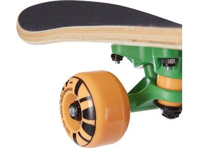 FIREFLY Skateboard SKB 105 Grün