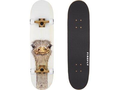 FIREFLY Skateboard SKB 505 Braun
