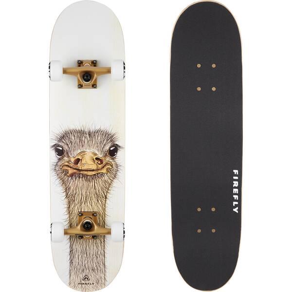 FIREFLY Skateboard SKB 505