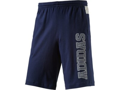 ADIDAS Herren Shorts Shorts Knitted Tentro Blau