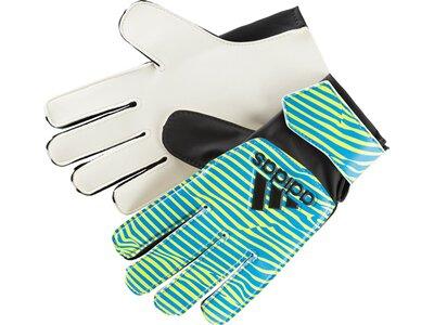 ADIDAS Herren Handschuhe X TRAINING Blau