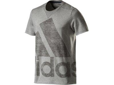 ADIDAS Herren Shirt ATC LOGO TEE Grau