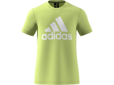 adidas Herren Logo Tee Sportmode T-Shirt Gelb