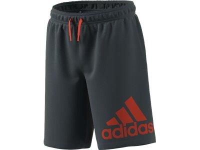 ADIDAS Kinder Shorts B BL Grau