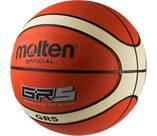 Vorschau: MOLTEN EUROPE Basketball
