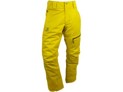 SALOMON Herren Hose EXPRESS PANT M LIGHT ALPHA YELLOW Gelb