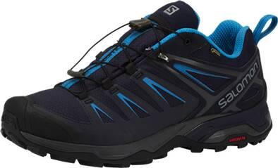 SALOMON Herren Schuhe X ULTRA 3 GTX® Gy/NIG