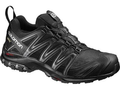 SALOMON Herren Schuhe XA PRO 3D GTX® Bk/Bk Grau