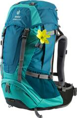 DEUTER  Rucksack INTERSPORT - FUTURA SL 30 IS