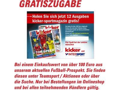 PUMA Herren Fussball-Rasenschuhe evoSPEED 4.3 FG Lila