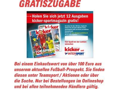 PUMA Herren Fußball-Rasenschuhe evoSPEED 4.3 FG Lila