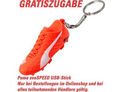 PUMA Herren Fußball-Rasenschuhe evoSpeed 3.4 FG Leder Rot