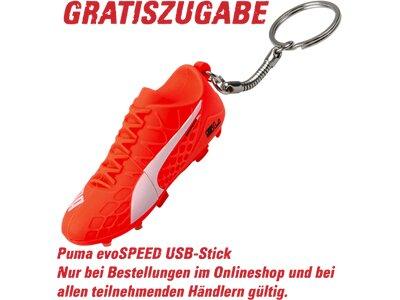PUMA Kinder Fussball-Rasenschuhe evoSpeed 4.4 FG Rot