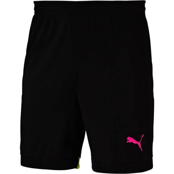 PUMA Herren Shorts IT evoTRG