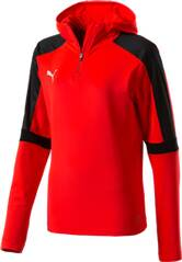 PUMA Kinder Shirt IT evoTRG