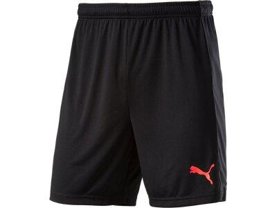 Puma Kinder Shorts evoTRG Shorts Jr Schwarz