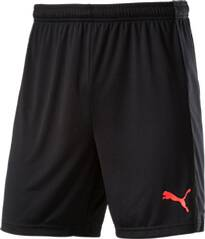 Puma Unisex Shorts evoTRG Shorts Jr
