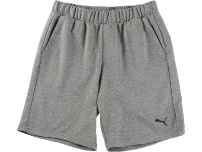 PUMA Herren Shorts Essentials Grau