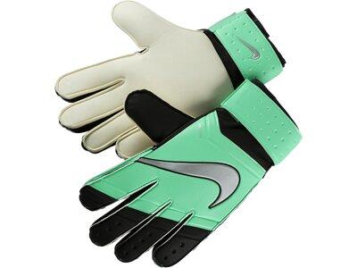 NIKE Kinder Handschuhe Gk Jr Match Grün