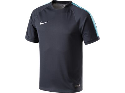 NIKE Herren Shirt SQUAD FLASH SS TRNG TOP 2 Grau