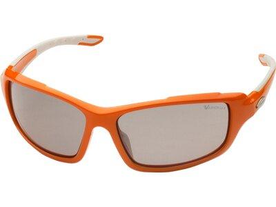 ALPINA Herren Brille CALLUM VL Orange