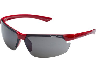"""ALPINA Sportbrille / Sonnenbrille """"Draff"""" Rot"""