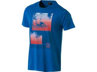 PROTEST Herren Shirt ORLANDO Blau