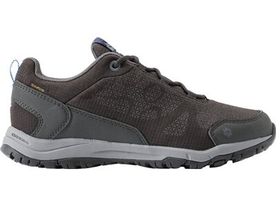JACK WOLFSKIN Damen Multifunktionsschuhe STINGRAY TEXAPORE LOW Grau