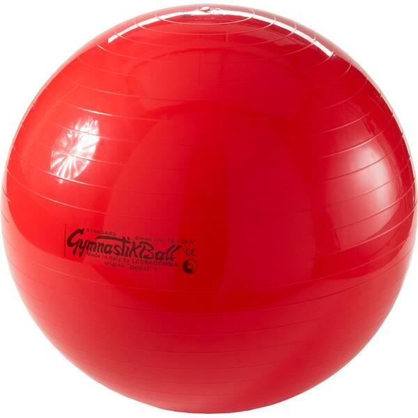LEDRAGOMMA Pezziball mit MAXAFE 65 cm