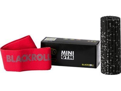 BLACKROLL MINI GYM Rot