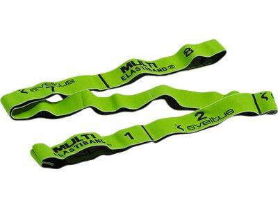 SVELTUS Fitness-Kleingerät Elastiband Grün