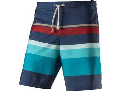 REEF Herren Badeshorts SIMPLE SWIMMER EMEA Blau