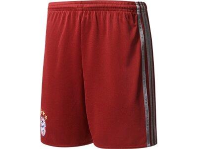 ADIDAS Kinder Teamhose FC Bayern München UCL Shorts Replica Braun