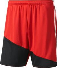 ADIDAS Herren Teamhose Regista 16 Shorts