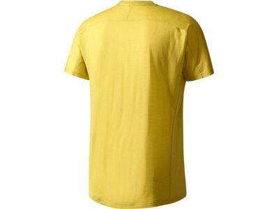 ADIDAS Herren Shirt TERREX Agravic T-Shirt Braun