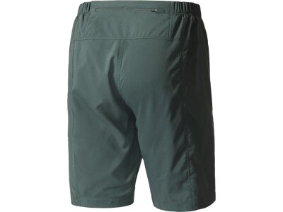 ADIDAS Herren Shorts TERREX Mountain Fly Shorts Grau