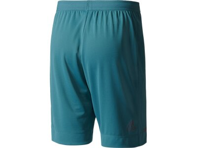 ADIDAS Herren Shorts Climachill Shorts Blau