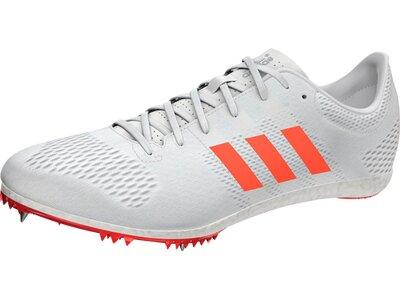 ADIDAS Herren Leichtathletikschuhe adizero Avanti Spike-Schuh Weiß