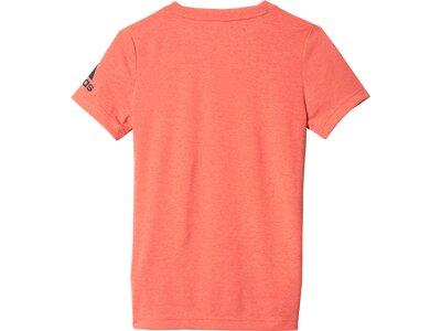 ADIDAS Kinder T-Shirt Climachill Braun