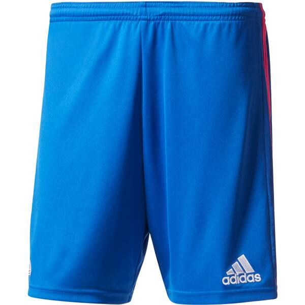 ADIDAS Herren Shorts Tanc 3S Blau