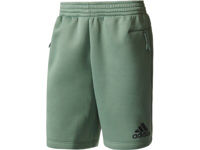 ADIDAS Herren Shorts adidas Z.N.E. Shorts Grau