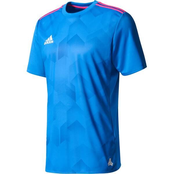 ADIDAS Herren T-Shirt Tanc Graphic Blau