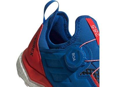 ADIDAS Herren TERREX Agravic Boa Schuh Blau