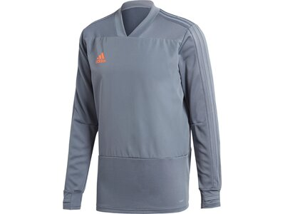 ADIDAS Herren Condivo 18 Player Focus Trainingsoberteil Grau