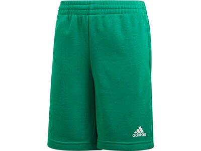 ADIDAS Kinder Shorts Essentials Logo Short Grün